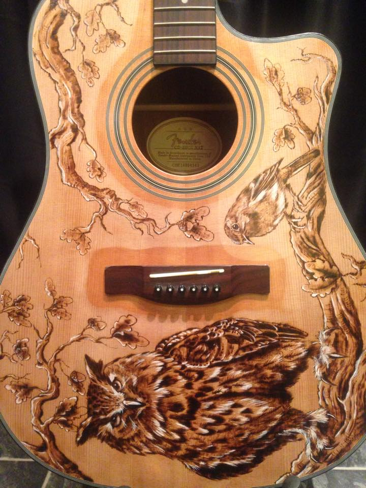 Owl and robin acoustic guitar